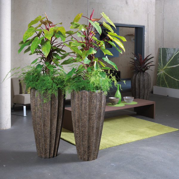 b ropflanzen karlsruhe blumen karlsruhe blumen bachmann oberwaldstra e 4 76227 karlsruhe. Black Bedroom Furniture Sets. Home Design Ideas